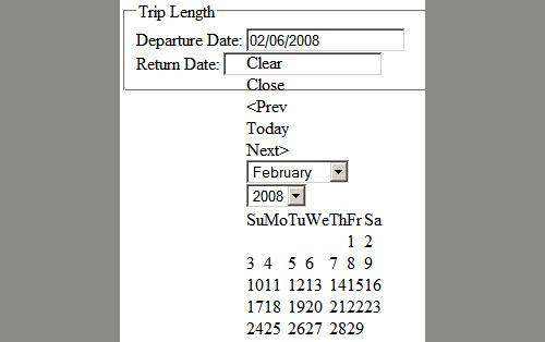 Standard date picker