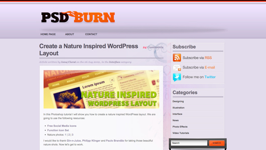 psd burn screenshot