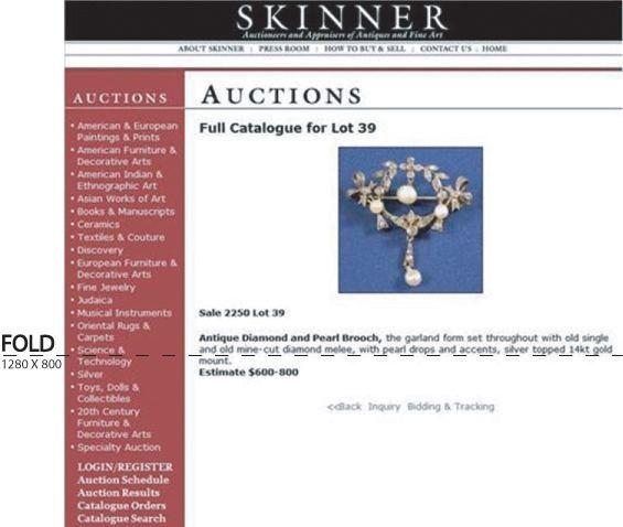 Skinnervalg1