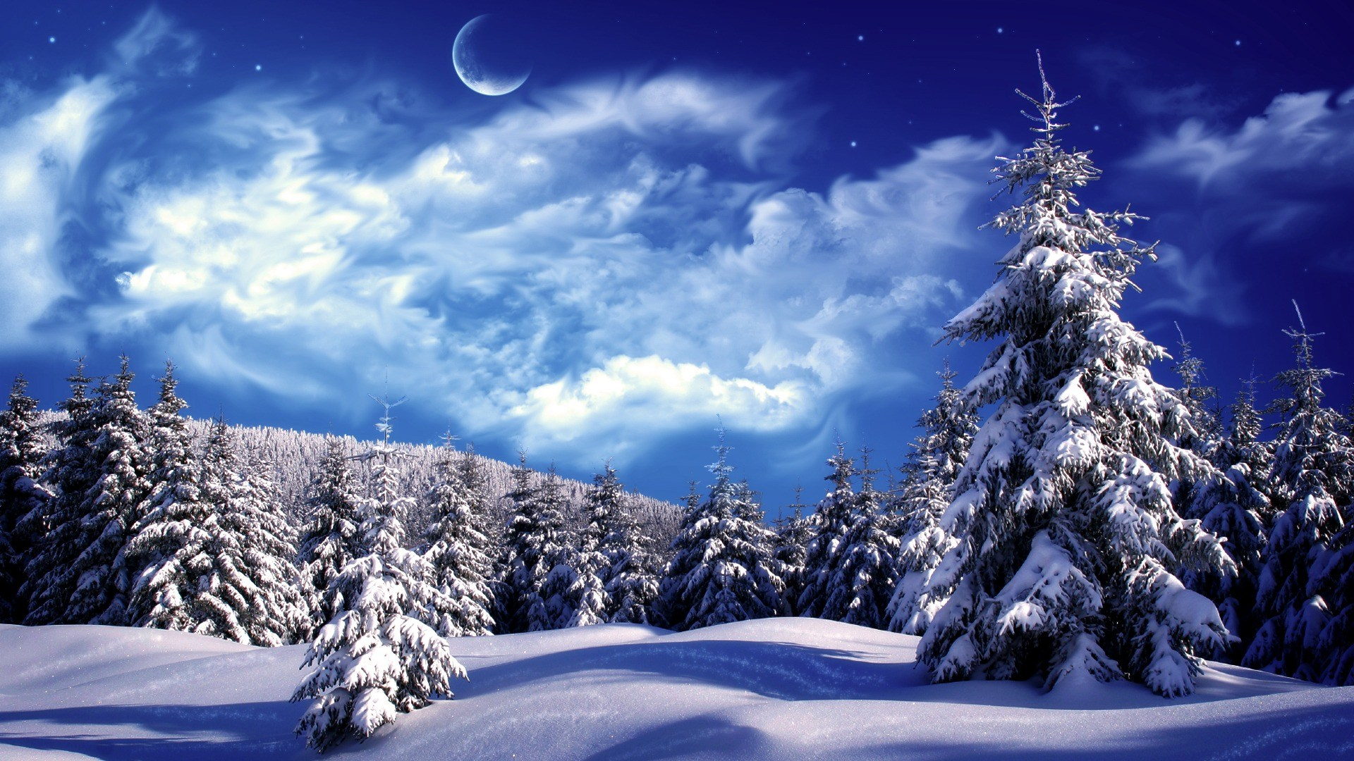 Picture of a snowy scene