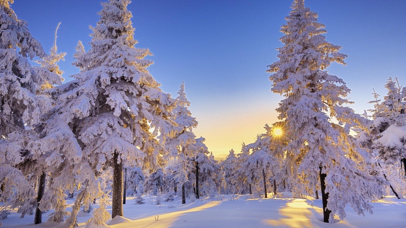 25 Beautiful Winter Wallpapers Winter