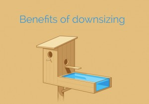 donsizing